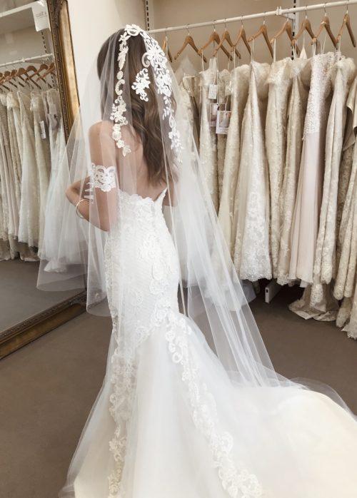 Beautiful bride wearing lace veil